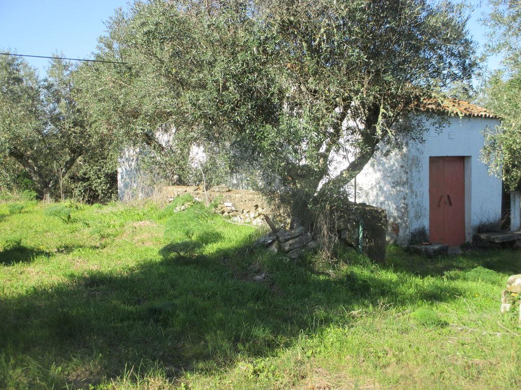 Portugalissimo - Selbstversorger Grundstücke - Nisa Saibreira