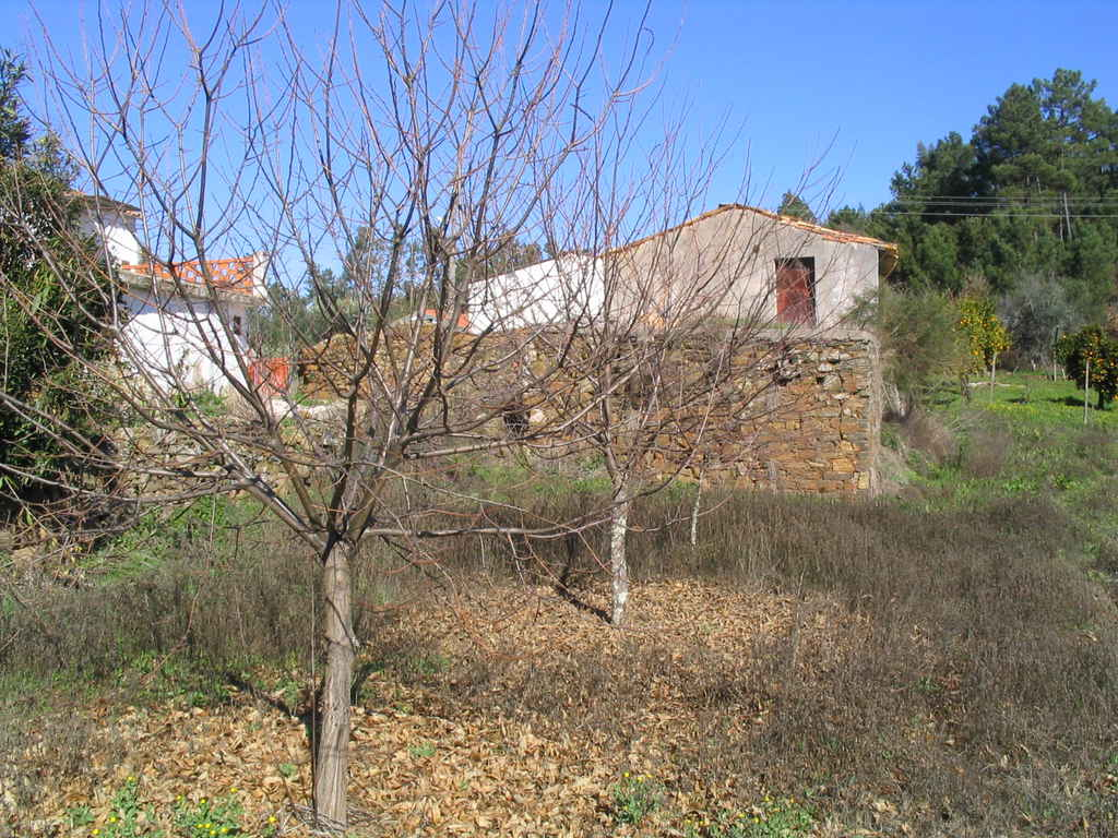 Portugalissimo - Selbstversorger Grundstücke - Ameixoeira - Casa da Vinha