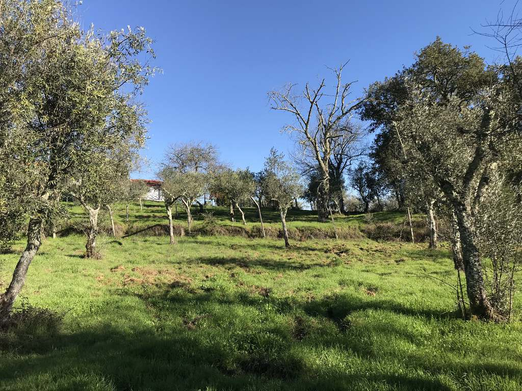 Selbstversorger Grundstück - Baugrundstück in Stauseenähe - Pesos