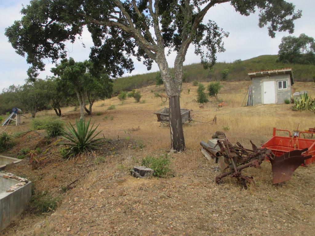 Portugalissimo - Selbstversorger Grundstücke - Algarve Lagos/Portimão: Quinta das Canas