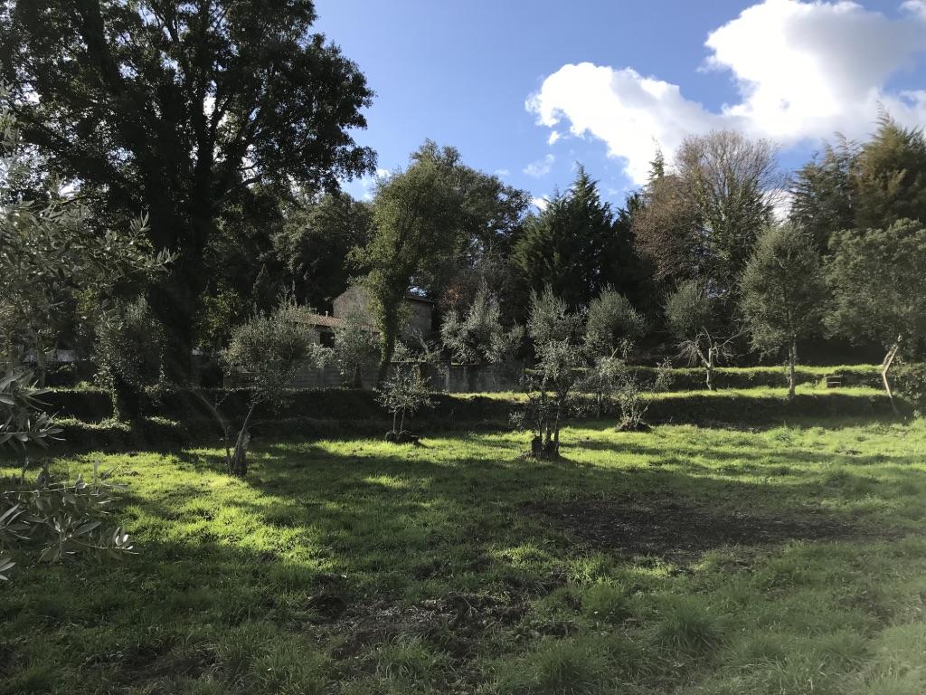 Portugalissimo - Selbstversorger Grundstücke - Quinta do Lago